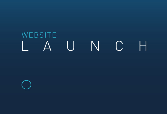 Website Launch 2013